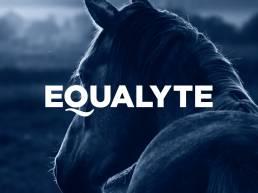 Equalyte-01